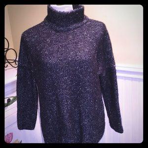 Zara Knit Turtle Neck Sweater